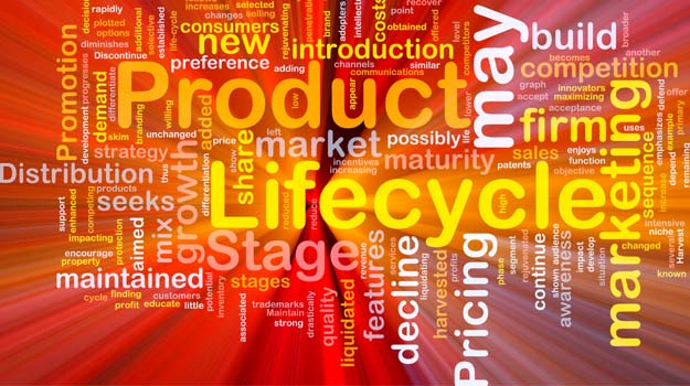What is Project Lifecycle Management